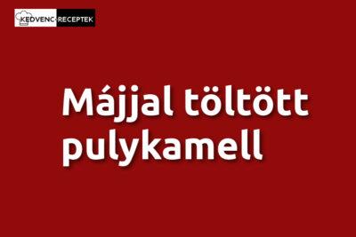 https://kedvenc-receptek.hu/husok/szarnyas/majjal-toltott-pulykamell/